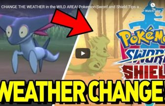 CHANGE THE WEATHER in the WILD AREA! Pokemon Sword and Shield Tips and Tricks Guide!