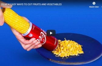 25 NEW EASY WAYS TO CUT FRUITS AND VEGETABLES